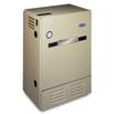 Performance™ 90 Gas-Fired Boiler Model: BW9